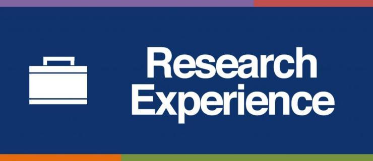 Tip Sheet Research Experience