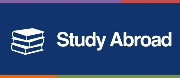 study essay writing nutrition month 2018