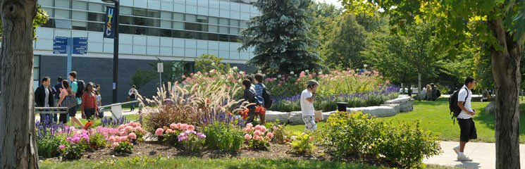 Students enjoying the campus.