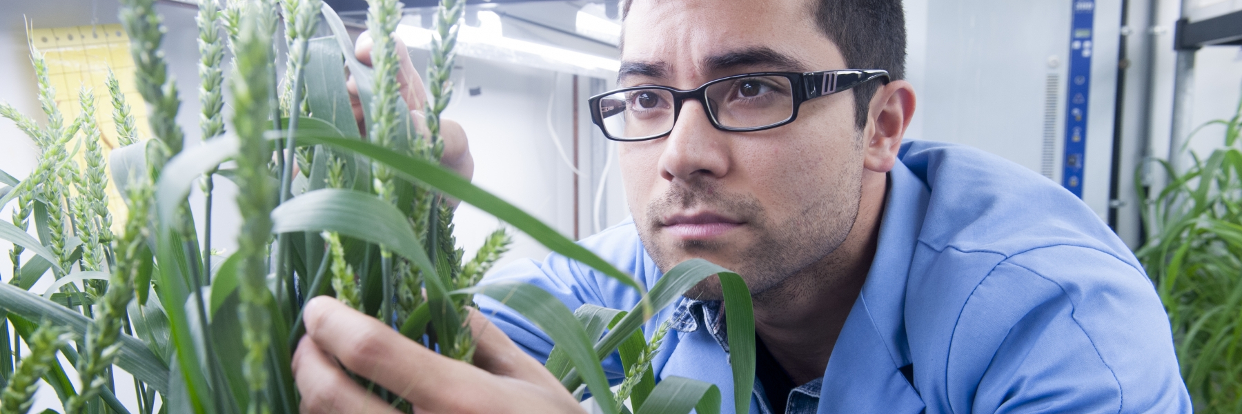 devrim coskun looking at a plant