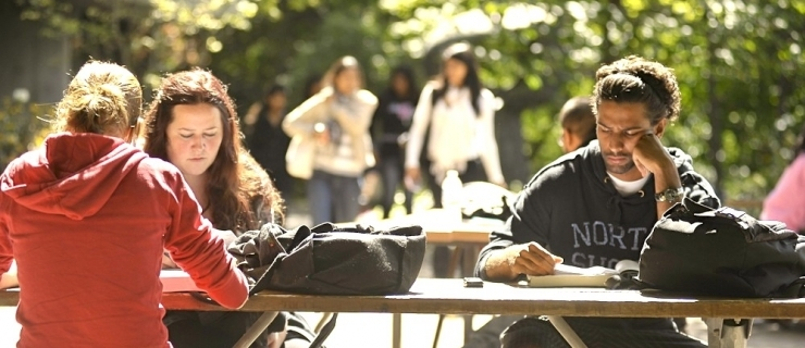 Students studying on the patio