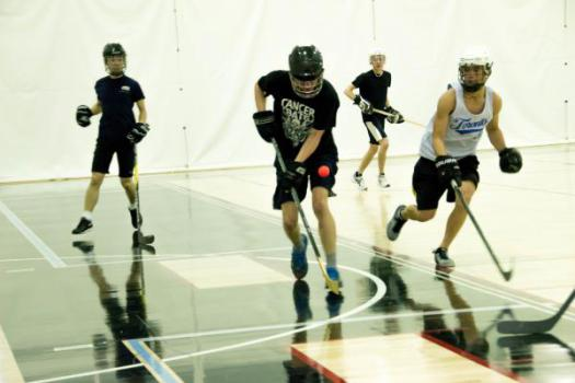 Co-Ed Interhouse Ball Hockey
