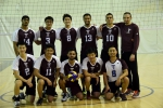 Men's D-League Volleyball, 2015