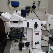 Epifluorescence Upright Microscope (Zeiss)