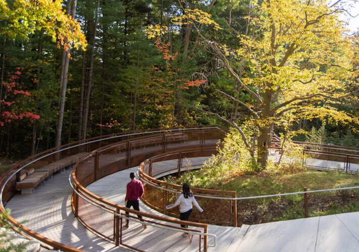 A loop of the UTSC land valley trail in early fall