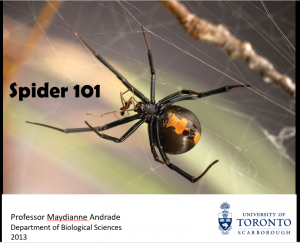 Link for video providing an introduction to the biology of spiders for those engaged in husbandry in the Andrade lab.