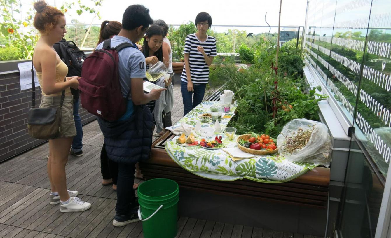 Students trying out fresh grown produce