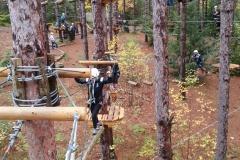 UTSC taking over the woods!