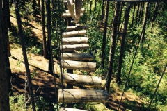 Ladder Obstacle Course